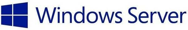 Licencje Dostępowe Microsoft Windows Server Cal 2019 Eng 5-Clt R18-05829