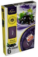 Duże podgrzewacze Tealight Maxi a'6 Black currant