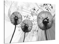 Obraz Dmuchawce w szarościach 100x70