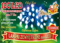 Sznur świetlny 10 m • 100 LED • na zewnątrz • 8 funkcji świecenia • możliwość łączenia • oświetlenie świąteczne NR 1787 Zimny biały