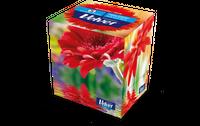 Velvet Chusteczki Higieniczne Uniwersalne W Kostce -Cube Style (60 Sztuk W Pudełku)