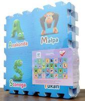 Concetto puzzle piankowe TVP ABC MAXI 32 elementy #W1