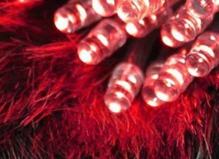 Lampki 10 LED na baterie - czerwony zdjęcie 9