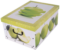 Pudełko Kartonowe Maxi Owoce Jabłko