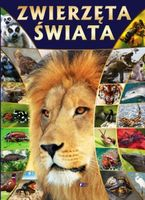 Zwierzęta świata encyklopedia leksykon duży 96 str