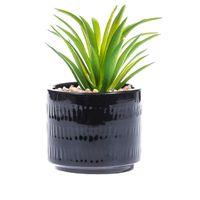PEPCO Roślinka w cementowej doniczce czarna