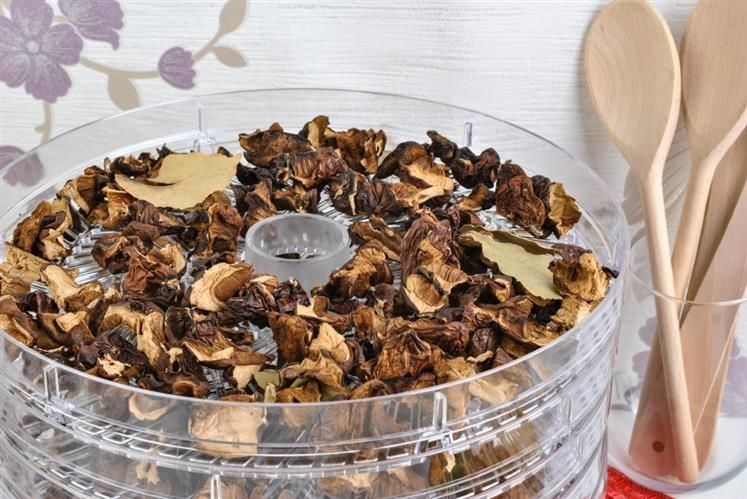 Suszarka do grzybów, owoców i warzyw z akcesoriami zdjęcie 20