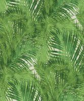 Tapeta HOTSPOT motyw roślinny liście palmy 805314 Rasch