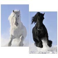 OBRAZ DRUKOWANY  Black and white 80x70