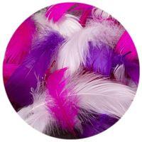 Piórka dekoracyjne w woreczku KOLOROWE mix2 różowe
