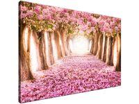 Obraz drukowany Romantyczna alejka 90x60 tanio