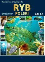 Ilustrowana encyklopedia ryb polski 100 gatunków