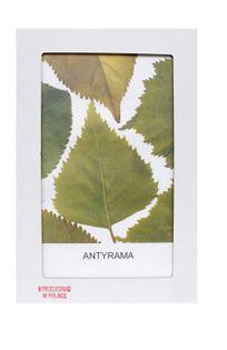 Antyrama A2 plexi 42x59,4 cm; 59,4x42 cm w opakowaniu Antyramy