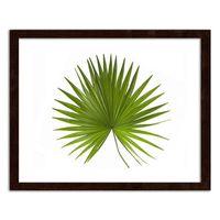 Plakat na ścianę w ramie brązowej, Liść palmy 100x70