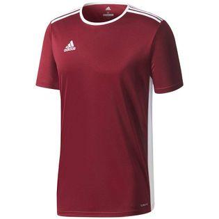 Koszulka dla dzieci adidas Entrada 18 Jersey JUNIOR bordowa CD8430/CE9564