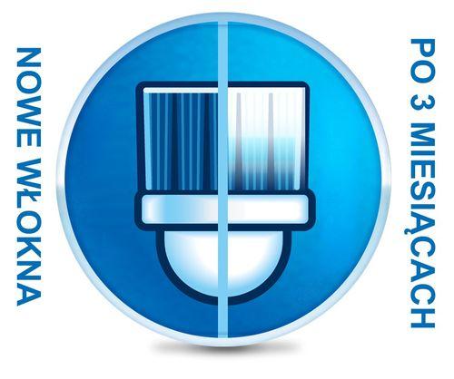 test Precision Clean | Oryginalna końcówka do Oral-B na Arena.pl