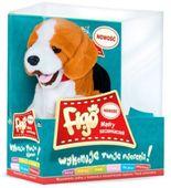 Piesek Reagujący Na Komendy Beagle