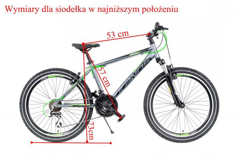 Rower chłopięcy 24 Kands Leopardo GRAFITOWO-SELEDYNOWY MAT 2020 r. na Arena.pl