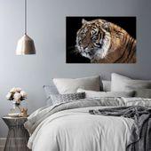 Obraz na płótnie - Canvas, Tygrys 3 70x50 zdjęcie 3