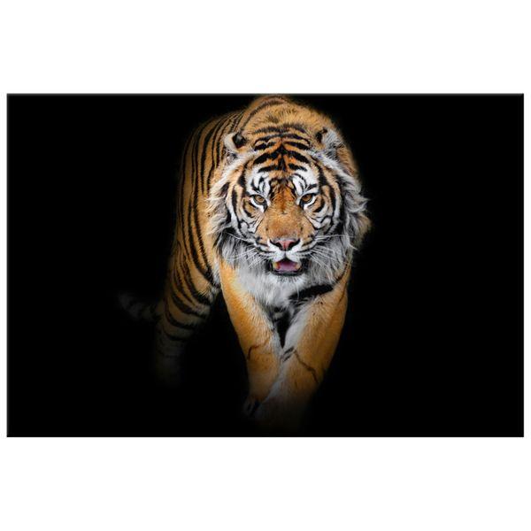 Obraz Na Ścianę 120X80 Tygrys Tygrys Zwierzę zdjęcie 4