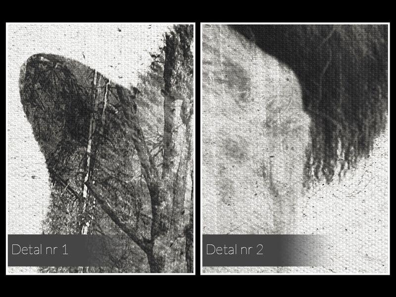 14202 Obraz na płótnie WILK CZARNO-BIAŁY zdjęcie 5