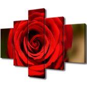 Obraz Na Ścianę 100X70 Czerwona Róża Płatki Róży