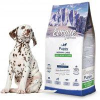 Evoque Puppy DZIK Z JAGNIĘCINĄ dla szczeniąt 12kg
