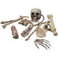 KOŚCI Halloween zakrwawiony szkielet czaszka XXL