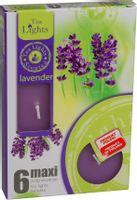 Duże podgrzewacze Tealight Maxi a'6 Lavender