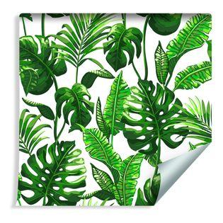 Tapeta Dekoracyjna Liście Monstery i Palmy Natura