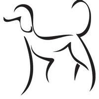 Naklejka dekoracyjna EXA02, pies, pudel Rozmiar - M, Kolor - Czarny, Szablon - PCV, Odbicie lustrzane - Tak