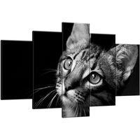 Obraz Na Ścianę 100X63 Spojrzenie Kotek Młody Kot