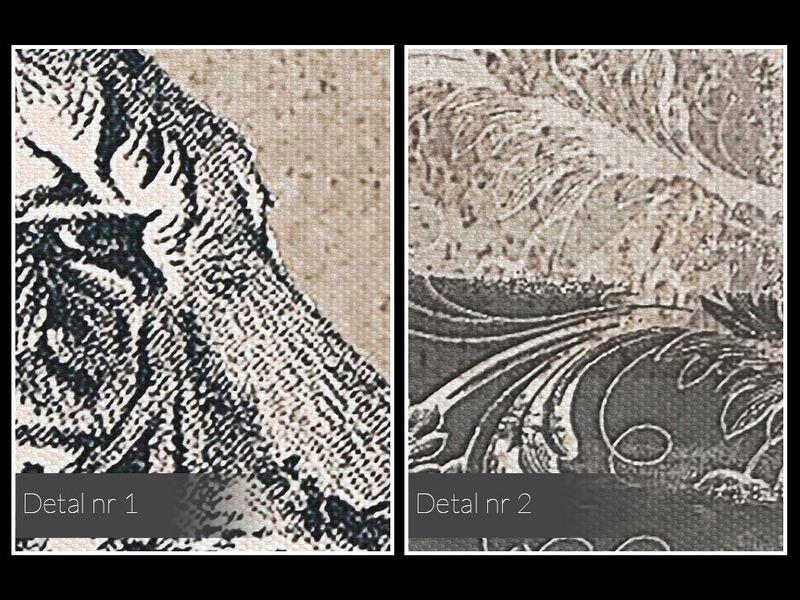 87001 Obraz na płótnie TYGRYS VINTAGE RETRO zdjęcie 5