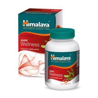Smartshake Original2Go 600ml (400+200+kaps) Kolor - Niebieski