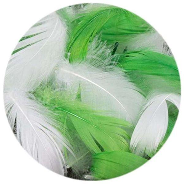 Piórka Dekoracyjne W Woreczku Białe I Zielone Mix