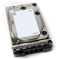 Dell Dysk serwerowy 1TB 7.2K  SATA 6Gbps 3.5 512n Non Hot-Plug