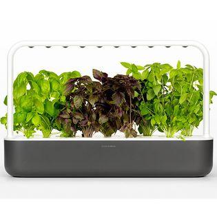 Click & Grow Smart Garden 9 grafitowy - ogród domowy z lampą LED