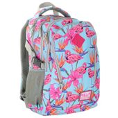 Plecak szkolny młodzieżowy Astra Hash HS-03, flamingi