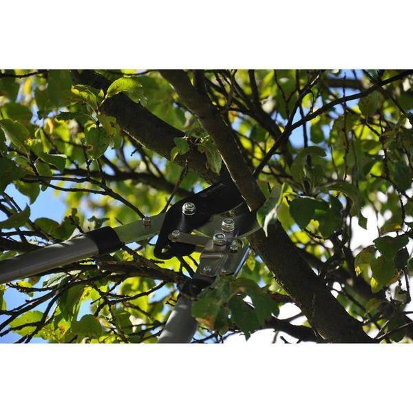 Nożyce do przycinania gałęzi FIELDMANN FZNR 1020 zdjęcie 4