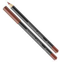 Professional Lip Pencil konturówka do ust 09 Rosewood 1g