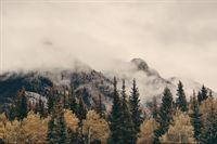 Fototapeta Las we Mgle Krajobraz Natura Góry 135x90