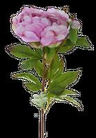 Kwiat Sztuczny Peony Pink 66Cm