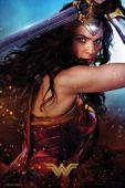 Dc Comics Wonder Woman Defend - plakat 61 x 91,5 cm