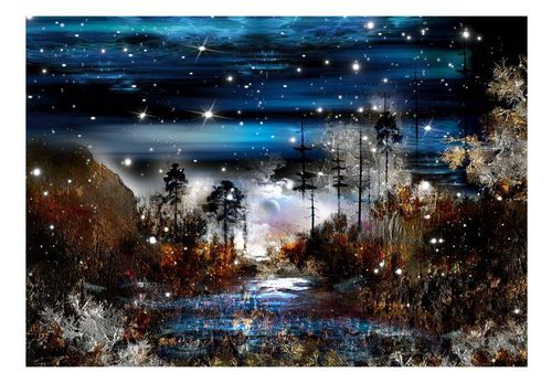 Fototapeta - Noc w lesie na Arena.pl
