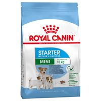 ROYAL CANIN MINI STARTER MOTHER BABYDOG SUCHA KARMA DLA PSA 8,5KG