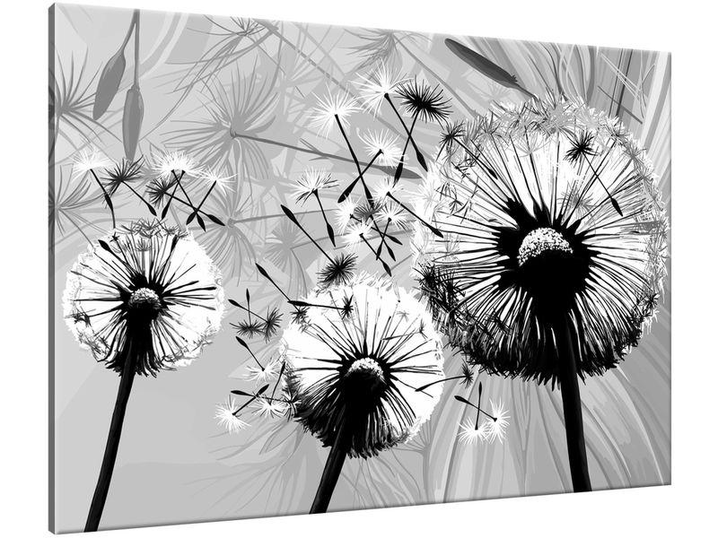 Obraz Białe dmuchawce na szarym tle 100x70 zdjęcie 1