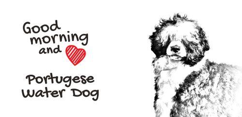 """Portugalski pies dowodny - kubek z wizerunkiem psa i napisem """"Good morning and love..."""". Wysokiej jakości kubek ceramiczny. na Arena.pl"""