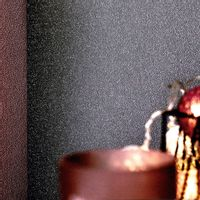 Fizelinowa tapeta, 2 rolki, gładka, lśniąca szarość 0,53 x 10 m