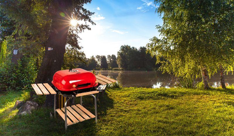 Grill ogrodowy węglowy z pokrywą i półkami D99 zdjęcie 2