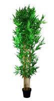 Sztuczny kwiat Bamboo 215x23x21 cm